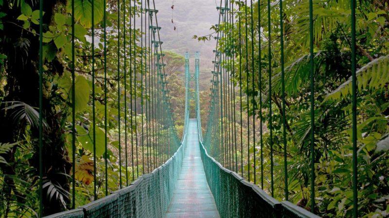 Monteverde-costarica-puente-suspendido