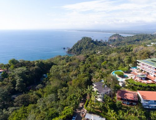 Activities in Manuel Antonio and Visit to the Natural Park